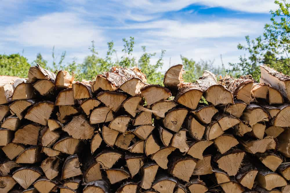 large pile of chopped wood organized on a firewood rack