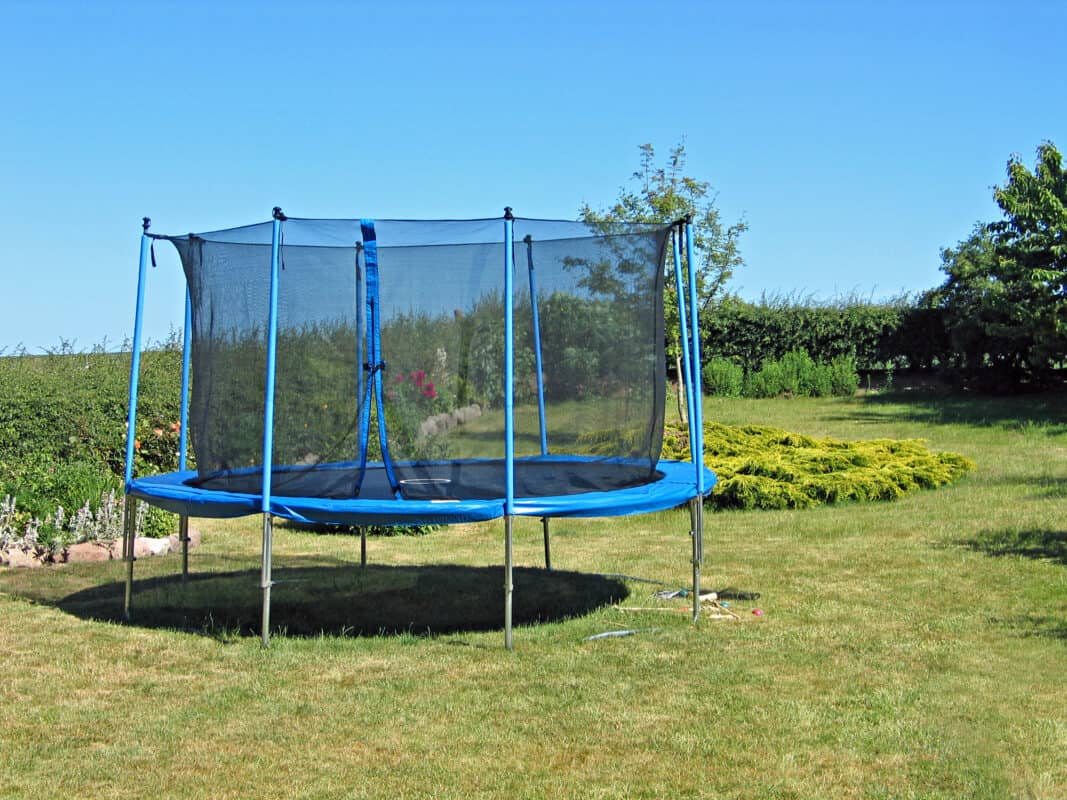 Trampoline with safety net on grass in backyard